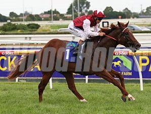 Sepoy wins a Group I in Melbourne, Australia.