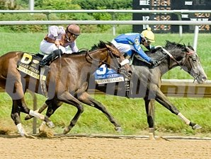 Bryan's Jewel wins the 2013 Obeah Stakes.