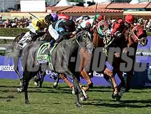 Mizdirection wins the 2013 Breeders Cup Turf Sprint
