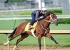 Five Derby Horses Breeze at Churchill Downs