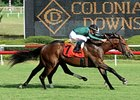 Gio Ponti Builds Rep in Virginia Derby