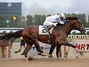 Warrior's Reward Retired to Spendthrift
