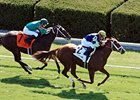 Bridgetown Moderate Favorite in Turf Sprint