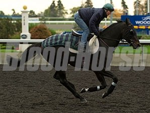 Scalo - Woodbine, October 9, 2012