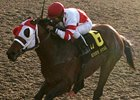 Friesan Fire is Louisiana Derby Choice