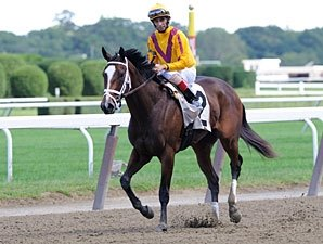 Lasix Ban Not a Worry For Pletcher