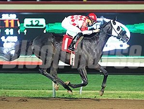 Speed Is Life wins the 2014 Minnesota Derby.