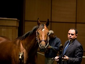 Fasig-Tipton Mixed Sale Average Down