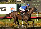 Baffert 'Moving Forward' in Pacific Classic