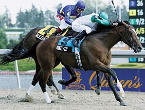 Queen's Plate Winner Mike Fox Retired