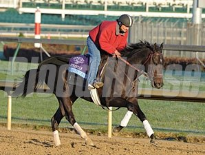 Take Charge Indy at Churchill Downs, Nov 1, 2011.