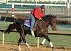 Take Charge Indy to Pass Tampa Bay Derby