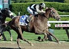 Capo Bastone Likely for Turf Sprint