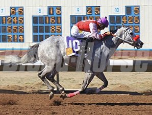 I Am Lesters Gal wins the 2012 Russell and Hellen Foutz Distaff Handicap.