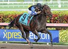 Barbados Rides Hot Streak into Hutcheson