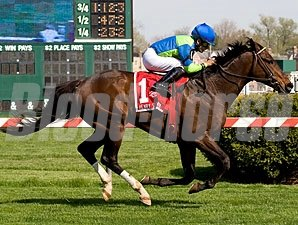 Brickell wins the 2009 Henry Clark Stakes.