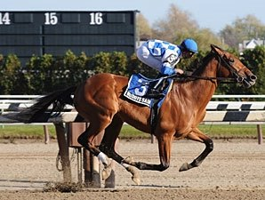 Buddy's Saint, Homeboykris Clash in Remsen