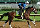 Works Help Pletcher Sort Belmont Prospects