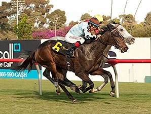 Patience Pays as Full Ransom Upsets Miesque