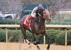 Millionaire Alternation to Stand at Pin Oak