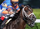 Overdriven Retired, to Stand at Ocala Stud
