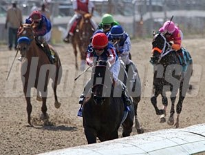 Nates Mineshaft wins the 2012 New Orleans Handicap.