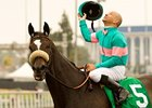 Zenyatta Covers Five Furlongs at Hollywood