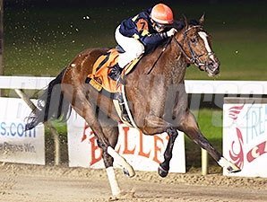 Honeycomb Allie wins the 2014 Orleans Stakes.