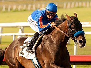 Game On Dude Dominates Hollywood Gold Cup
