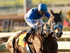 Points Offthebench wins the 2013 Santa Anita Sprint Championship.