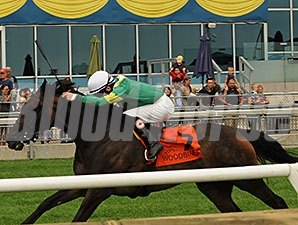 Meri Shika wins the 2014 Flaming Stakes.