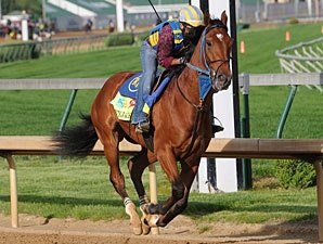 Derby Entrant Vyjack Breezes