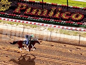 Goldencents - Pimlico, May 14, 2013.