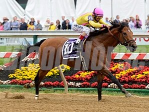 Sage Valley wins the 2013 Maryland Sprint Handicap.