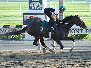 Fleur de Lis: Champ Royal Delta Faces Four