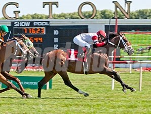 Dark Cove wins the 2013 Stars and Stripes Stakes.