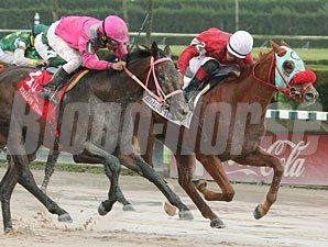 D'nied Permission wins the 2012 Florida Stallion Series Affirmed Division.