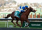 Dice Flavor Hits Meydan Track After Illness