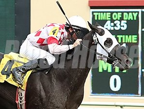Speed Is Life wins the 2014 Victor S. Myers Stakes.