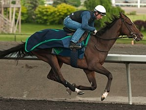 Woodbine Oaks, Plate Trial Take Spotlight