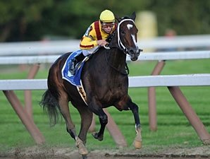 Rachel Alexandra Pointed to Spring Return