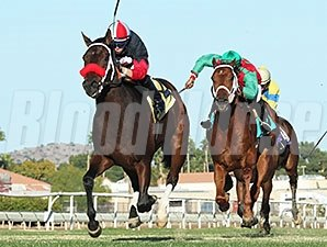 Storm Power wins the 2014 Walter R. Cluer Memorial Stakes.