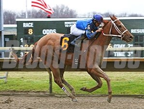 Rod's Five Star wins the 2012 Valley Forge Stakes.