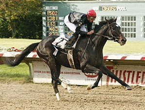 Gone Astray Finds Right Path in Ohio Derby