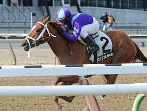 Princess of Sylmar One to Watch in Gazelle