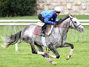Turallure works at Keeneland on October 13, 2011.