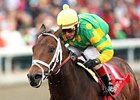 Aikenite to Stand at Calumet Farm