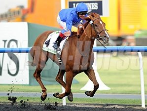 African Story in the 2012 Goldolphin Mile.