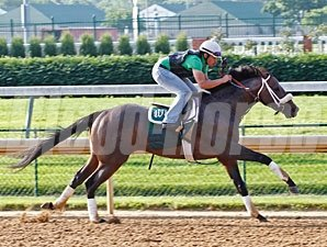 Oxbow - Churchill Downs, May 30, 2013.
