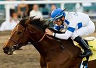 Hollendorfer Travels East for Classic Shot